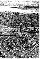 http://www.delphis.ru/files/jrnl_body_images/17(1)_20.03.1999/labirinty_druidov/image006.jpg